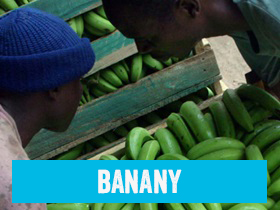 Banany Fairtrade