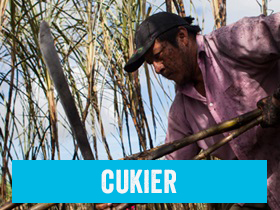 Cukier Fairtrade