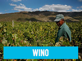 Wino Fairtrade