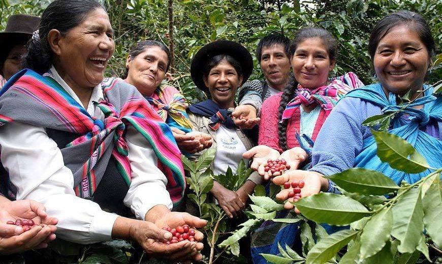 Producenci kawy ze spółdzielni Fairtrade Cooperativa Agraria Cafetalera Valle de Incahuasi, Peru. Fot. © CLAC
