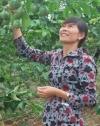 Nguyen Thi Phuong Dong ze spółdzielni Hop Tac Xa Nong Nghiep Chanh Day